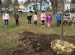 Tree Planting at Hamilton Central School