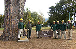 Bartlett's Santa Barbara Crew tending to the Wardholme Torrey pine