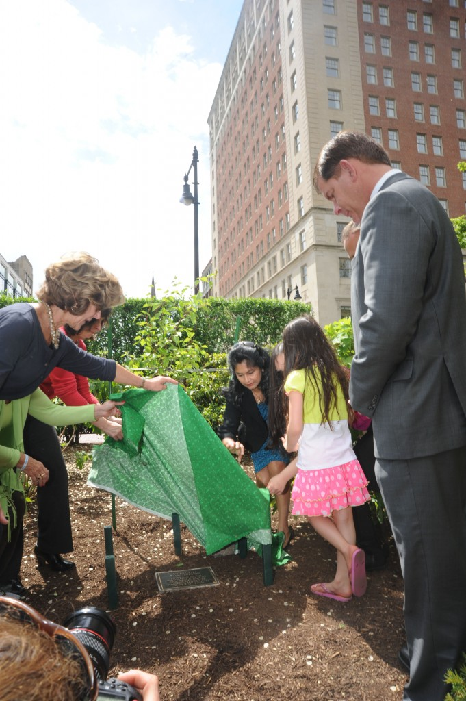 9 11 Survivor Tree2 681x1024 - Planting of Survivor Tree Sapling at Boston Public Gardens