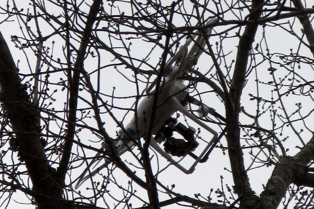 Aerial Drone Stuck in Tree 1024x683 - Stuck Up a Tree: Tips for Getting Drones Down
