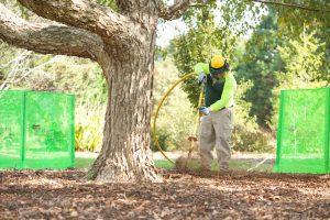 excavating the soil
