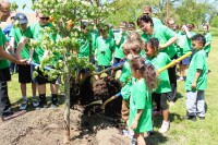 Bala Cynwyd Wissinoming Park 200x133 - Arbor Day and Earth Day 2017