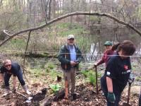 Danbury Halle Ravine 200x150 - Arbor Day and Earth Day 2017