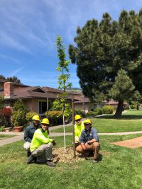 Earth Day 219 San Rafael. 200x267 - Arbor Day and Earth Day 2019