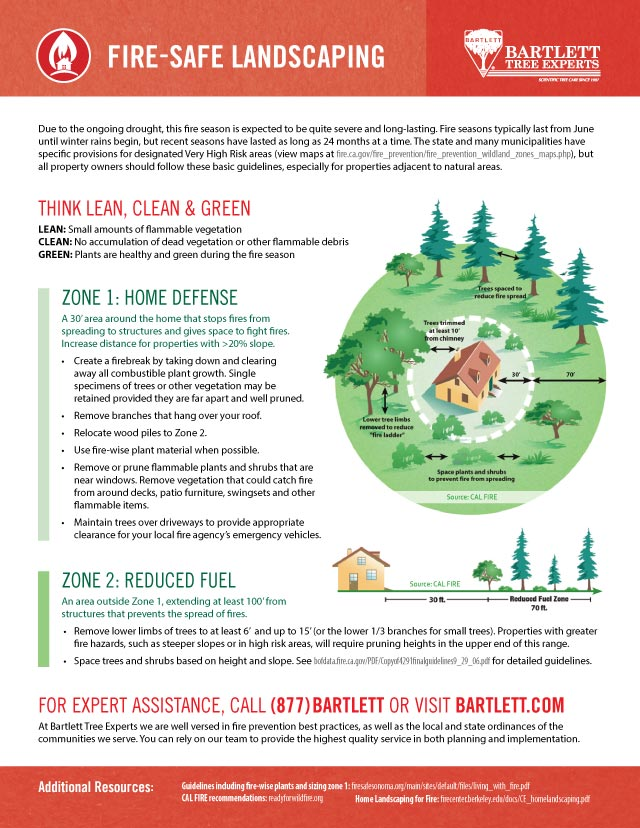 Fire-Safe Landscaping Guidelines