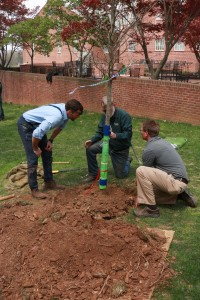 arbor day baltimore 2016 a 200x300 - Arbor Day and Earth Day 2016