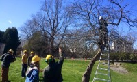 arbor day beverly farms 2016 e 200x120 - Arbor Day and Earth Day 2016