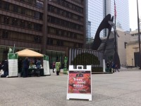 arbor day chicago daley plaza 2016 a.jpg 200x150 - Arbor Day and Earth Day 2016