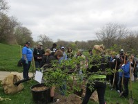 arbor day grand rapids mulick park 2016 c 200x150 - Arbor Day and Earth Day 2016