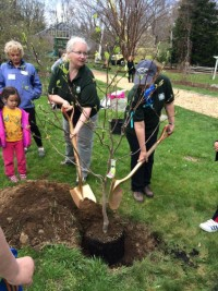 arbor day stamford bartlett arboretum 2016 a 200x267 - Arbor Day and Earth Day 2016