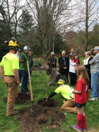 arbor day stamford bartlett arboretum 2016 b 200x267 - Arbor Day and Earth Day 2016