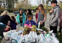 arbor day waltham brookline 2016 a 200x140 - Arbor Day and Earth Day 2016
