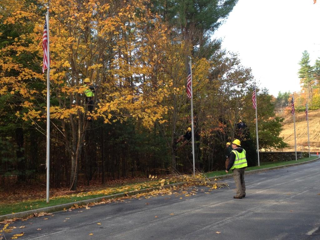 arborist volunteers in each tree pruning c - Hooksett Employees Participate in NHAA Fall Workday at NH State Veterans Cemetery