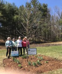auburn 2018 200x241 - Arbor Day and Earth Day 2018
