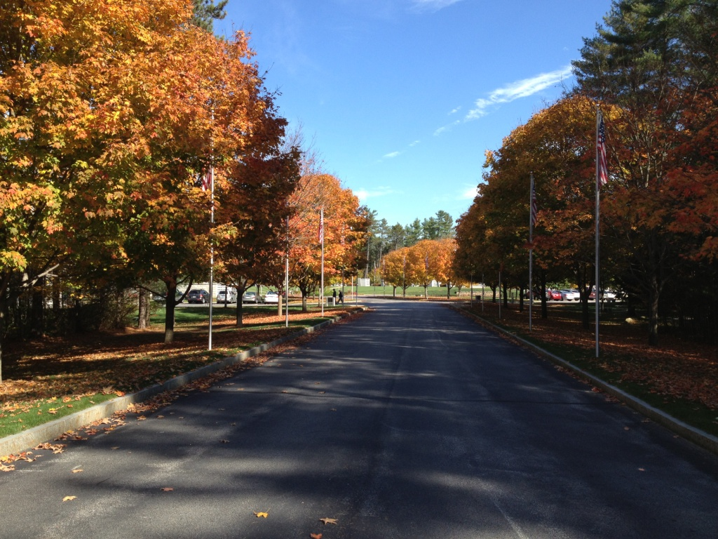 ave of flags   before c - Hooksett Employees Participate in NHAA Fall Workday at NH State Veterans Cemetery