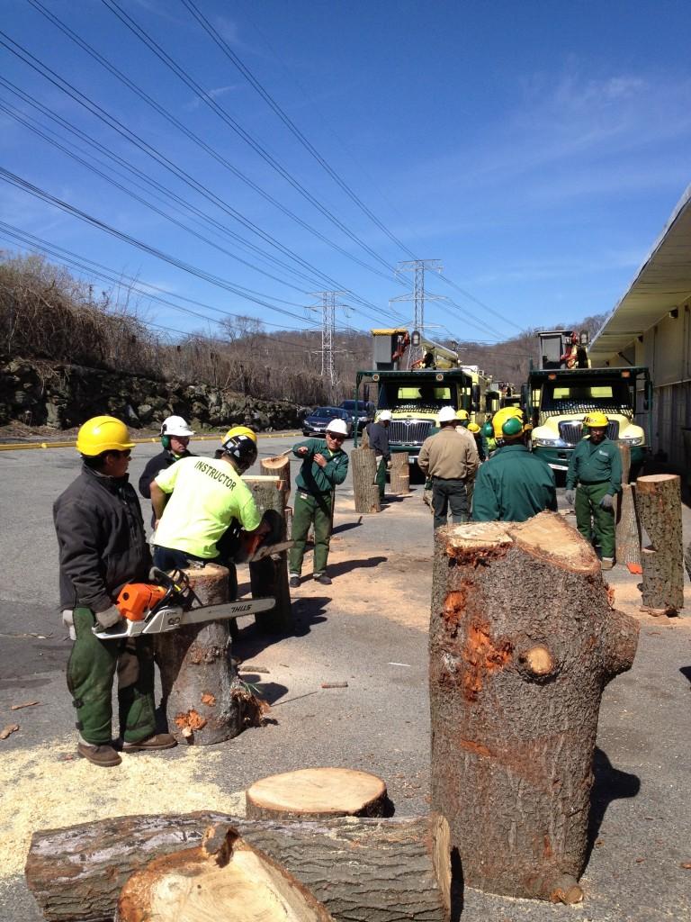 chainsaw-workshop