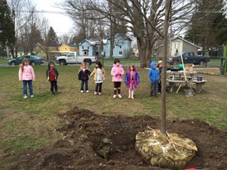 hamilton central - Arbor Day and Earth Day 2015