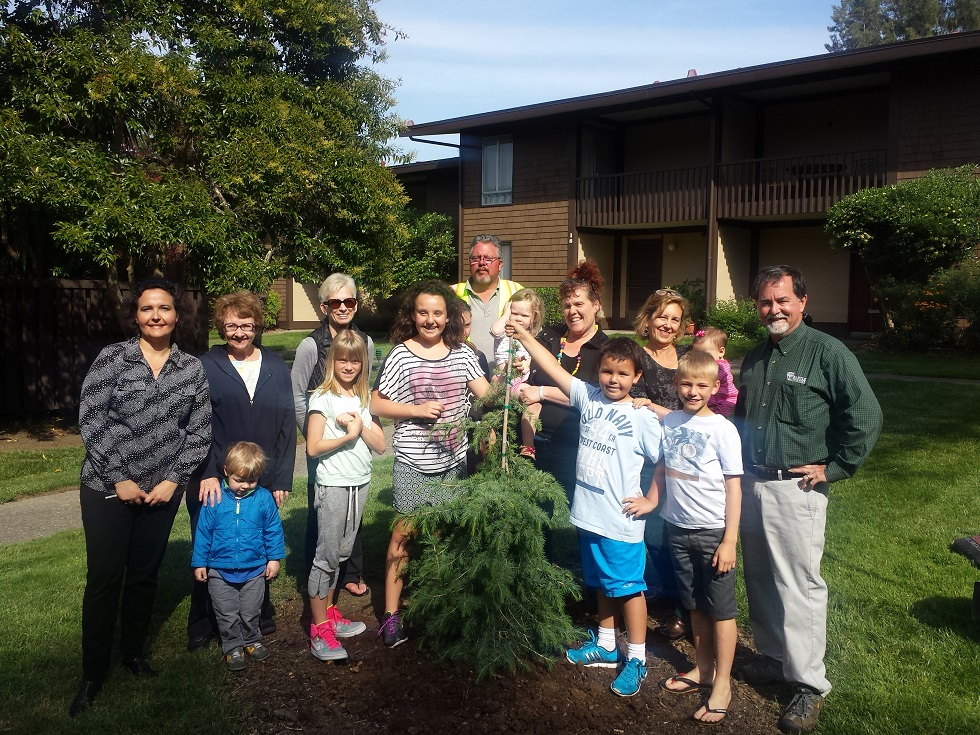 meadows of terra - Arbor Day and Earth Day 2015