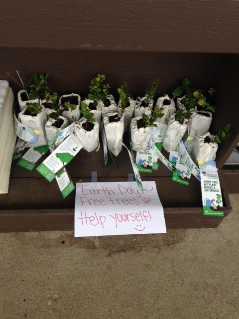 santa barbara seedlings e1430854579778 - Arbor Day and Earth Day 2015