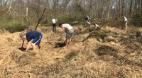 south plainfield 2018 200x110 - Arbor Day and Earth Day 2018