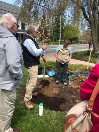 st michaels 2018 200x267 - Arbor Day and Earth Day 2018