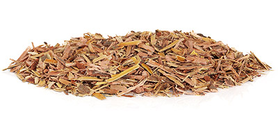 willow bark2 - Take Some Willow Bark and Call Me in The Morning…