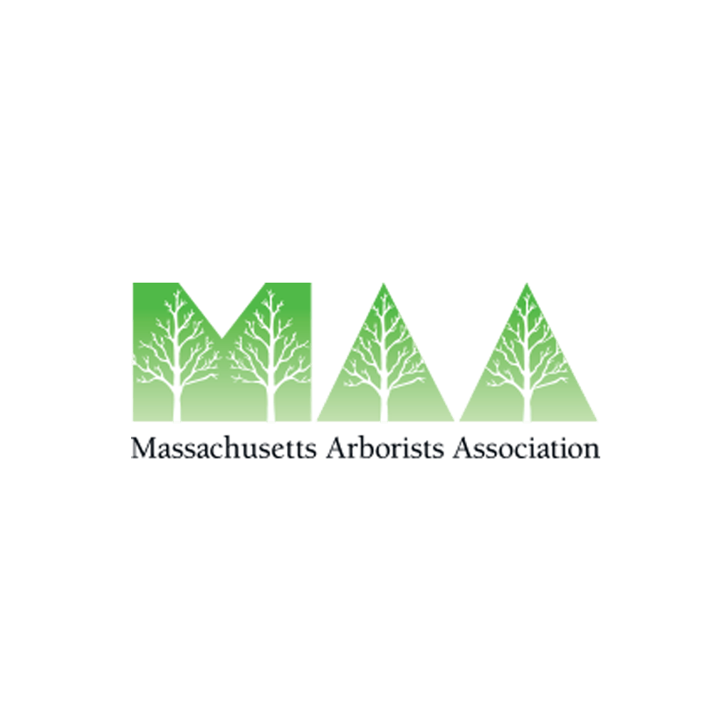 Massachusetts Certified Arborist