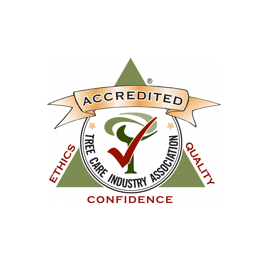 Tree Care Industry Accreditation