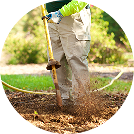 Fertilization and Soil Care Tree Service