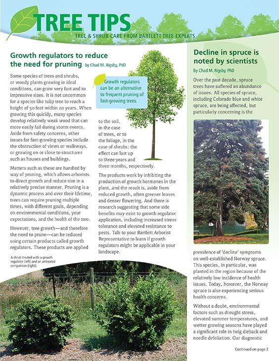 Bartlett Tree Tips - Summer 2019
