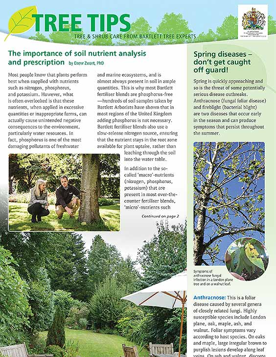 Bartlett Tree Tips - Spring 2021