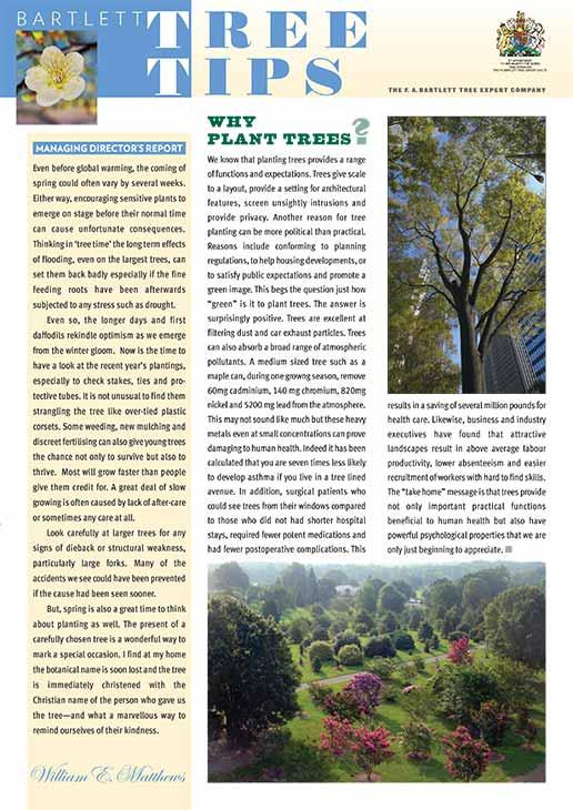 Bartlett Tree Tips - Spring 2008