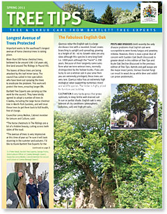 Bartlett Tree Tips - Spring 2011