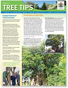 Bartlett Tree Tips - Spring 2011