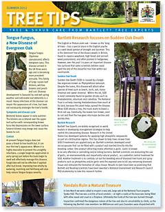 Bartlett Tree Tips - Summer 2012