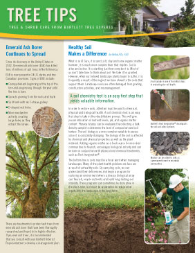 Bartlett Tree Tips - Summer 2016