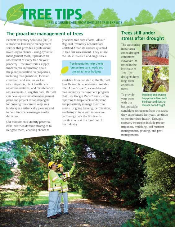 Bartlett Tree Tips - Summer 2017