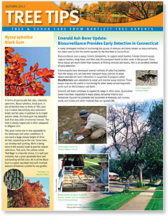 Bartlett Tree Tips - Fall 2012