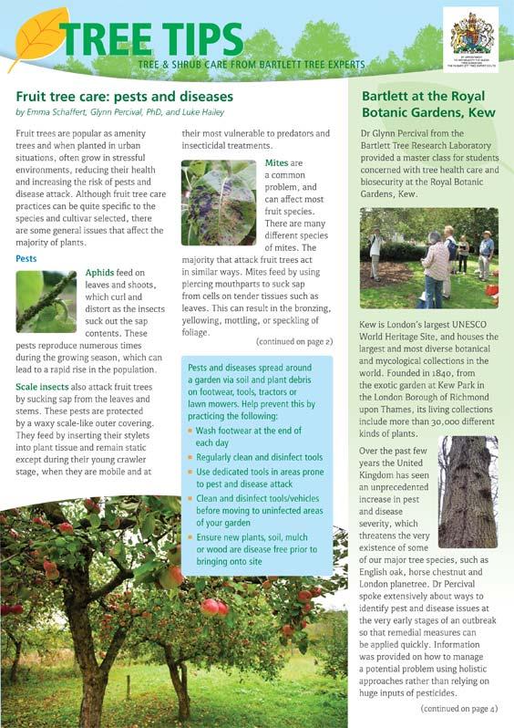 Bartlett Tree Tips - Autumn 2017