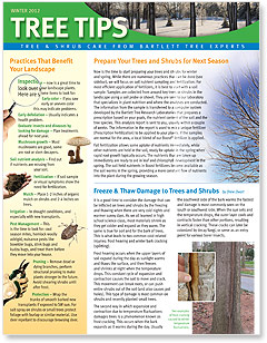 Bartlett Tree Tips - Winter 2012